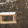 An empty bird feeder sways in the wind. - Stock Photo
