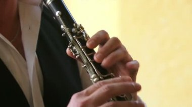 Flutist plays the flute — Stock Video