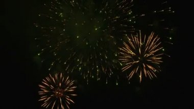 Beautiful fireworks igniting the sky on Fourth of July. — Stock Video