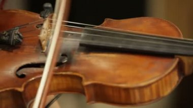 Young woman playing the violin in an orchestra. — Stock Video