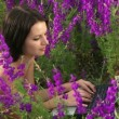 The girl was lying with laptop. Girl lying on the field of beautiful flowers and trained on the laptop. — Stock Video