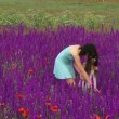 Stock Video: Girls are walking among flowers. adult womand young child walking across field of beautiful flowers.