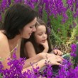 Stock Video: Womand child on nature. adult womand baby lying on field of beautiful flowers using laptop.