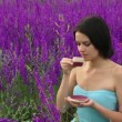 Woman drinking tea in the field. Beautiful girl drinking tea in nature among the purple flowers. - Stock Photo