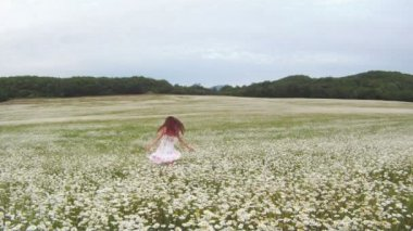 She walks in daisies. Beautiful girl in white dress walking on chamomile field on the background of mountainous terrain. — Stock Video