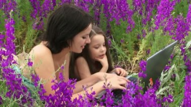 Woman and child on the nature. An adult woman and a baby lying on the field of beautiful flowers using a laptop. — Stock Video