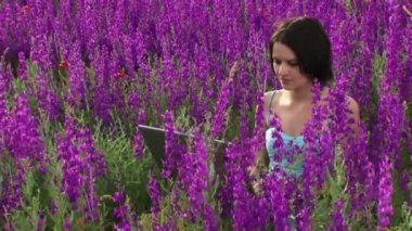 Computer technics on the nature. A beautiful young girl is among the lavender flowers and is working on a laptop. — Stock Video