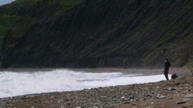 Człowiek i pies na brzegu. fale oceanu piękne walcowane na lądzie. na plaży człowiek spaceru z psem. — Wideo stockowe