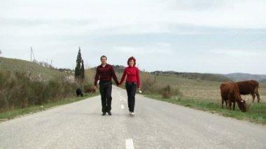 Mutlu çifte bir yolda — Stok video