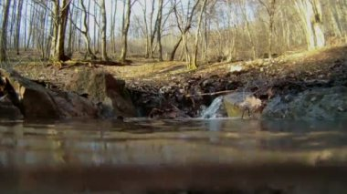 Water pours into the lake. The crystal clear spring water flowing to the ground. Underwater camera. — Stock Video