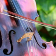 Cellist. Professional musicians playing cello in the symphony orchestra. - Stock Photo