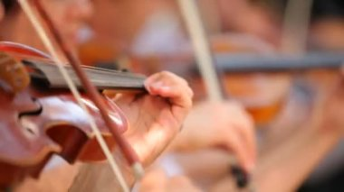 Professional violinists. Some play the violin one music. — Stock Video