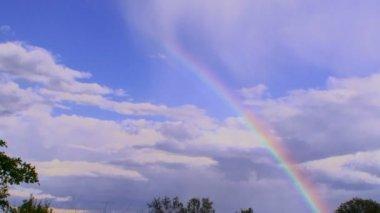 Beautiful rainbow. A beautiful rainbow was formed after heavy rain. — Stock Video