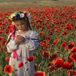 Ukrainian girl in a field among blossoming poppies. Among blossoming poppies. — Stock Video