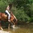 Beautiful horsewoman crossing a river. Beautiful horsewoman. — Stock Video