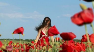 Beautiful Woman Among Poppies — Stock Video