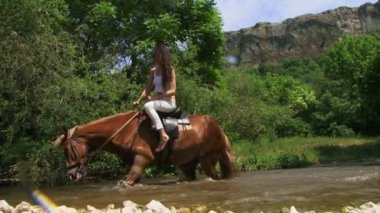 Horse falling in a river with horsewoman. Falling in a river — Stock Video