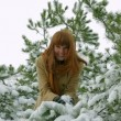 Girl in the snowy pines — Stock Video