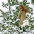 Stock Video: Womplaying snowballs in forest.