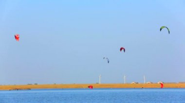 Power kites flying in the sky above the sea. Power kites. — Stock Video