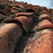 Stock Video: Tiled roof.