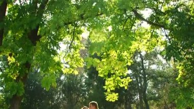Newlyweds posing in a park. — Vídeo Stock