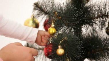 Christmas tree. — Stock Video