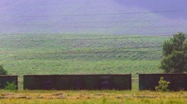 Freight train moving along the countryside. Countryside scene. — Vidéo