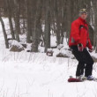 Stock Video: Snowboarding.