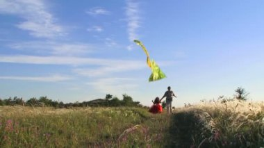 Man and little girl with kite — Stock Video