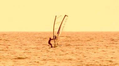 Windsurfers — Stock Video