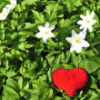 Stock Photo: Red heart with white flowers