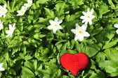 Red heart with white flowers — Stock Photo