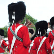 Stock Photo: Tivoli Marching Band