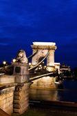 Hungary, budapest, chain bridge. — Stock Photo