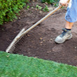 Stock Photo: Turf is laid by gardener