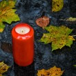 Stock Photo: Light grave on all saints day in fall with leaves