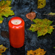 Light grave on all saints day in the fall with leaves - Stock Photo