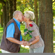 Royalty-Free Stock Photo: Mature senior couple is in love.