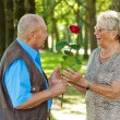 Stock Photo: Mature senior couple is in love.
