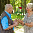 Mature senior couple is in love. — Stock Photo #13142410