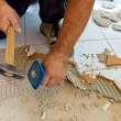 Renovate and refurbish bathroom — Εικόνα Αρχείου #14027906