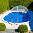 Pool in the garden — Stock Photo