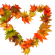 Colorful autumn leaves in heart shape - Stock Photo