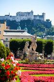 Austria, salzburg, mirabell species — Stock Photo