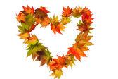 Feuilles d'automne coloré en forme de coeur — Photo