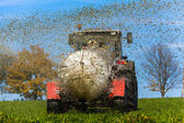 Tractor fertilizes with manure a field — Stock Photo