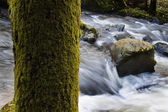 Creek with running water and stones (rocks) — Stock Photo