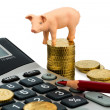 Pork and calculator - Stock Photo