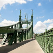 Stock Photo: Budapest, hungary, freedom bridge